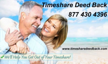 gallery/timeshare deed back
